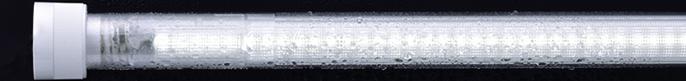 WT600